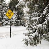 场面多雪的街道 库存图片