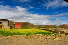 场面西藏 免版税库存图片