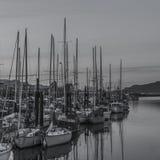 坎伯河小游艇船坞 库存图片