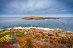 坎加鲁岛,南澳大利亚 库存照片