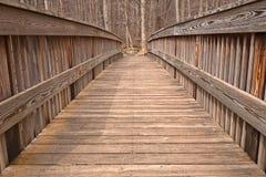 坎宁安桥梁- HDR 免版税库存照片