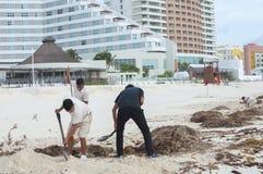 坎昆海滩清洁 免版税库存照片