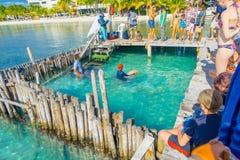坎昆,墨西哥- 2018年1月10日:在一个木码头的未认出的游人享受展示的美好的室外观点的 库存图片