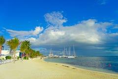 坎昆,墨西哥- 2018年1月10日:白色沙子和一些棕榈树室外看法在加勒比海户外在坎昆 免版税图库摄影