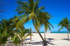 坎昆Playa Langostas海滩在墨西哥 免版税库存图片
