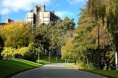 坎特伯雷大学 免版税图库摄影