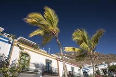 坎那利岛、马德拉和里斯本 免版税库存照片