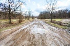 坏乡下公路在早期的春天 库存图片