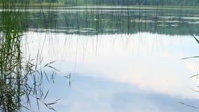 坏大湖雨天气 影视素材