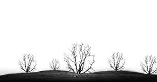 坏环境的概念图片在黑白口气的 库存图片