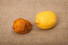 坏画布果子好柠檬二 库存图片