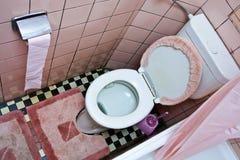 坏的洗手间 库存照片