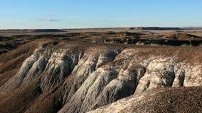 坏被石化的森林地产国家公园 库存照片