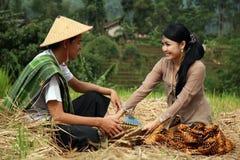 坐下亚裔的农夫 免版税库存照片
