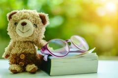坐与书和镜片的棕熊玩偶 免版税库存照片