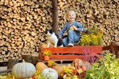 坐与南瓜和猫的愉快的年轻男孩 秋天 库存图片