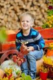 坐与南瓜的愉快的年轻男孩 秋天 库存照片