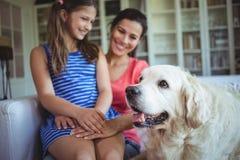 坐与爱犬的母亲和女儿在客厅 库存图片