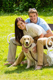 坐与金毛猎犬的夫妇在公园 图库摄影