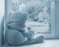 坐和看在窗口的熊 免版税库存图片