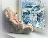 坐和看在窗口的熊 图库摄影