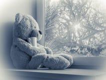 坐和看在窗口的熊 免版税库存照片