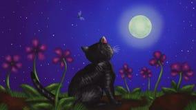 坐和观看满月的猫在夜2019年动画MP4 股票录像