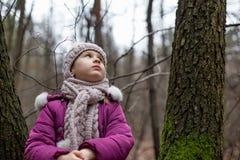 坐在一棵树附近的小女孩在秋天森林里 库存图片