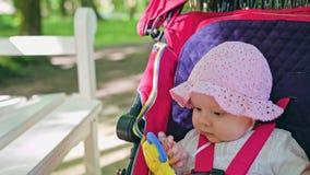 坐在一辆婴儿推车的婴孩` s在公园 图库摄影
