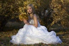 坐在下落的叶子中的秋天公园的白色礼服的愉快的美丽的年轻新娘 库存照片