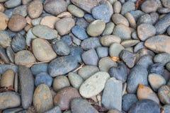 坐在与各种各样的颜色的温暖的午间海滩太阳的圆的石头 免版税库存图片