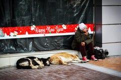 坐在与新年的装饰的陈列室前面的一名孤独,无家可归,alcohol-dependent妇女与两条街道狗 Sofi 免版税库存照片