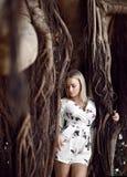 坐在与藤本植物的巨大的密林树的妇女在白色便服 免版税库存图片