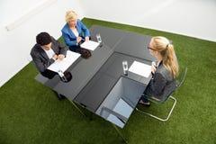 坐在书桌的环境保护者在办公室 免版税库存照片
