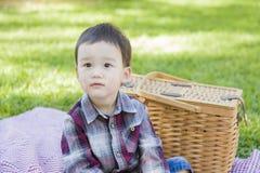 坐在公园的年轻混合的族种男孩在野餐篮子附近 免版税库存图片