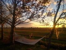 坐在华美的日落前面的松弛吊床 库存图片