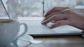 坐在咖啡店的少妇在木桌上 在桌上是灰色铝膝上型计算机 写博克的女孩,浏览互联网 影视素材