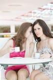 坐在咖啡馆的二个女孩 库存照片