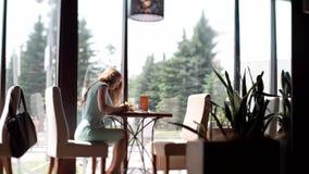 坐在咖啡馆的女商人在书桌填装一个文件 女孩写一支圆珠笔 股票视频