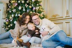 坐在圣诞树下的愉快的家庭 库存图片