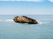 坐在岩层顶部的海鸥在比亚利兹,巴斯克语 库存图片