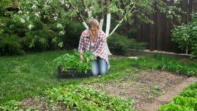 坐在庭院和种植幼木的年轻女性花匠 免版税库存照片