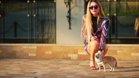 坐在有狗的城市的典雅的时髦的女人 股票视频