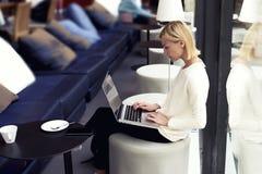 坐在有网书的大学图书馆里的女学生 免版税库存图片