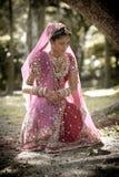 坐在树下的年轻美丽的印地安印度新娘 免版税库存图片