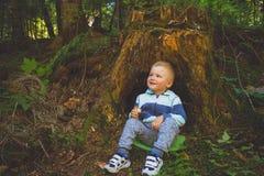 坐在树桩附近的小男孩 库存照片