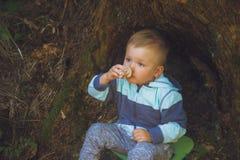 坐在树桩附近的小男孩 库存图片