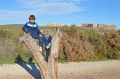 坐在树的男孩 免版税库存图片