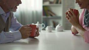 坐在桌上的男性和女性退休人员,谈话在茶,愉快的夫妇 影视素材