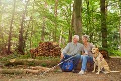 坐在森林里的资深夫妇 免版税库存图片